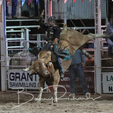 Narrandera Rodeo 2019 - Open Bull Ride Chute Out
