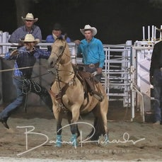 Narrandera Rodeo 2019 - Rope & Tie - Sect 2