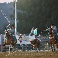 Merrijig Rodeo 2019 - Team Roping - Sect 2