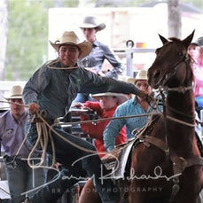 Nebo Rodeo 2019 - AP Rope & Tie - Sect 1