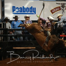 Nebo Rodeo 2019 - AP Open Bull Ride - Sect 1