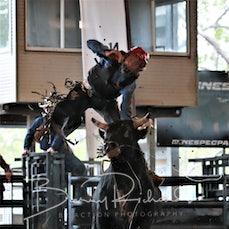 Nebo Rodeo 2019 - AP Junior Bull Ride - Sect 1