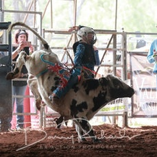 Nebo Rodeo 2019 - Mini Bulls - Sect 1