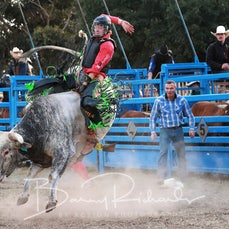 Ballarat Rodeo 2019 - Junior Steer Ride - Sect 1
