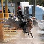Trans Tasman 2019  High School Rodeo Series Final - Saturday