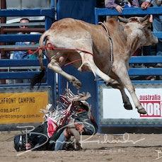 NQ Elite Rodeo 2019 - Jnr Rodeo - Mini Bulls - Sect 1