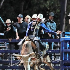 NQ Elite Rodeo 2019 - Sat Performance - Open Bull Ride Chute Out