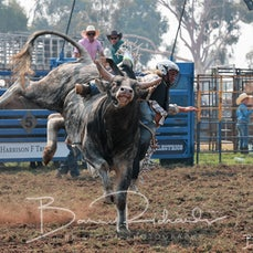Yarrawonga Rodeo 2019 - 2nd Div Bull Ride - Slack 1