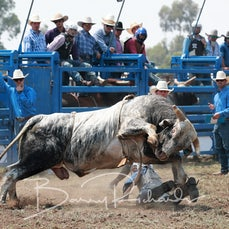 Yarrawonga Rodeo 2019 - 2nd Div Bull Ride - Slack 2