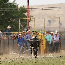 Tallangatta Rodeo 2019 - Team Roping - Slack 1