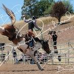 Alexandra APRA Rodeo 2020 - Slack Session