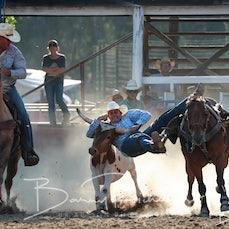 Myrtleford Rodeo 2019 - Steer Wrestling - Sect 1