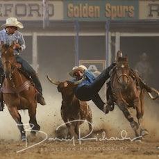 Myrtleford Rodeo 2019 - Steer Wrestling - Sect 2