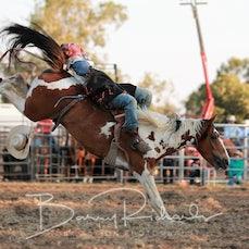 Yarrawonga Rodeo 2019 - 2nd Div Bareback - Sect 1