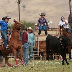 Tallangatta Rodeo 2019 - Breakaway Roping - Slack 2