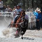 Narrandera Rodeo 2020 - Slack Session