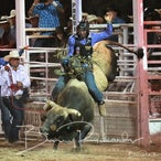 Narrandera Rodeo 2020 - Performance Session