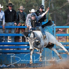Alexandra Rodeo 2019 - Local Steer Ride - Sect 2