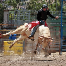 Alexandra Rodeo 2019 - 2nd Div Bull Ride - Slack 1