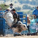Merrijig Rodeo 2020 - Slack Session