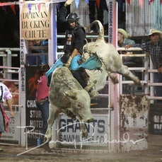 Narrandera Rodeo 2020 - Open Bull Ride - Sect 2