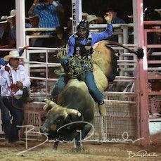 Narrandera Rodeo 2020 - Open Bull Ride - Sect 1