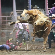 Narrandera Rodeo 2020 - 2nd Div Bull Ride - Sect 2