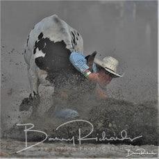 Narrandera Rodeo 2020 - Steer Wrestling - Sect 1