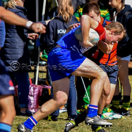 2018 Southern Highlands Sevens - Bowral Rugby Club staged its annual Southern Highlands Sevens tournament at Eridge Park on Saturday, September 29.