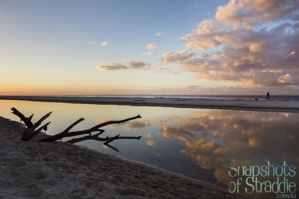 Driftwood on Home - Snapshots of Straddie. Wall Art Landscape and Seascape Photography by Julie Sisco. Photos from North Stradbroke Island, Queensland,...