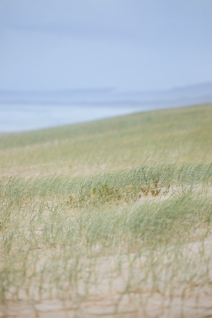 Dunes along Main - Snapshots of Straddie. Wall Art Landscape and Seascape Photography by Julie Sisco. Photos from North Stradbroke Island, Queensland,...