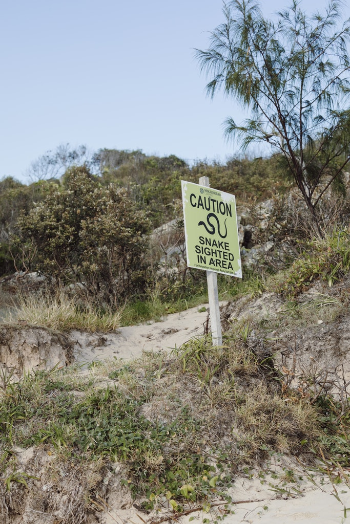 Snake sighting sign - Snapshots of Straddie. Wall Art Landscape and Seascape Photography by Julie Sisco. Photos from North Stradbroke Island, Queensland,...
