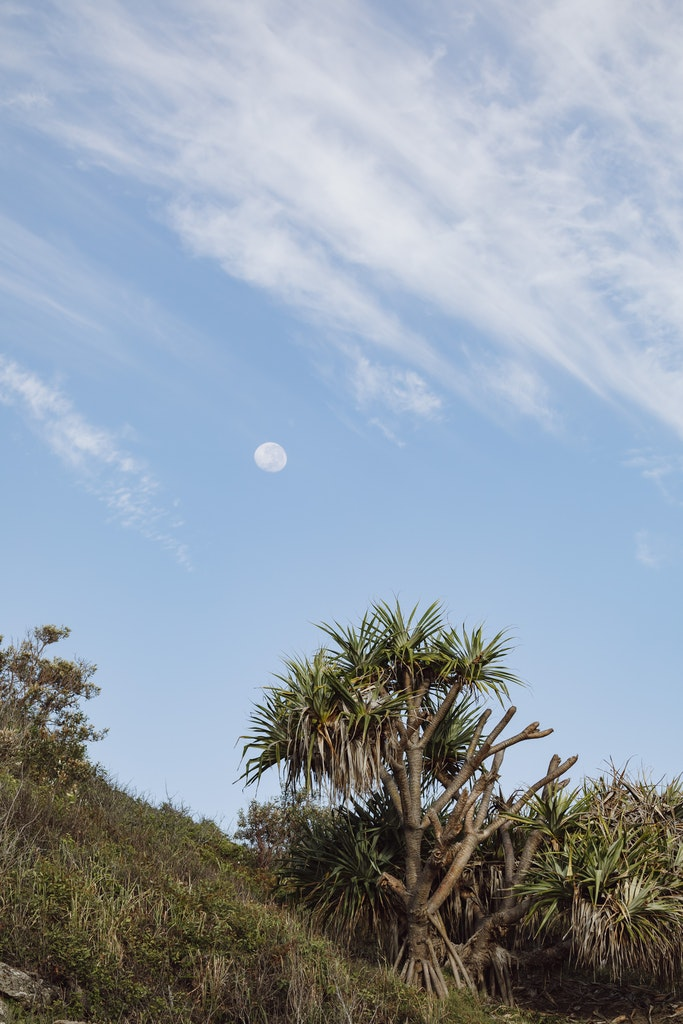 Moon - Snapshots of Straddie. Wall Art Landscape and Seascape Photography by Julie Sisco. Photos from North Stradbroke Island, Queensland, Australia. Snapshots...