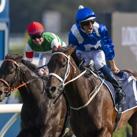 20190413: Winx 2019 Queen Elizabeth Stakes - copy 2 - Champion mare WINX bows out of racing by winning her 25th G1, her 33rd consecutive race and 3rd straight...