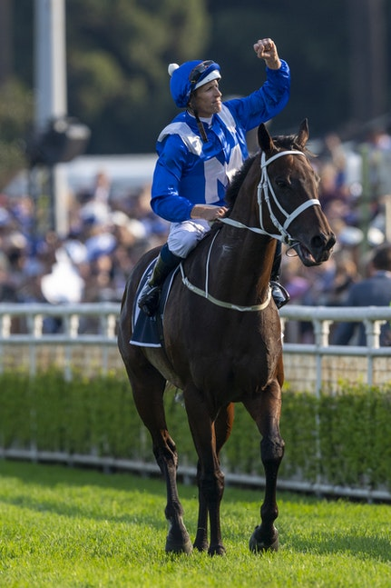 Winx-BowmanHugh-20190413-6291 - Photo by Bronwen Healy.  The Image is Everything - Bronwen Healy Photography.