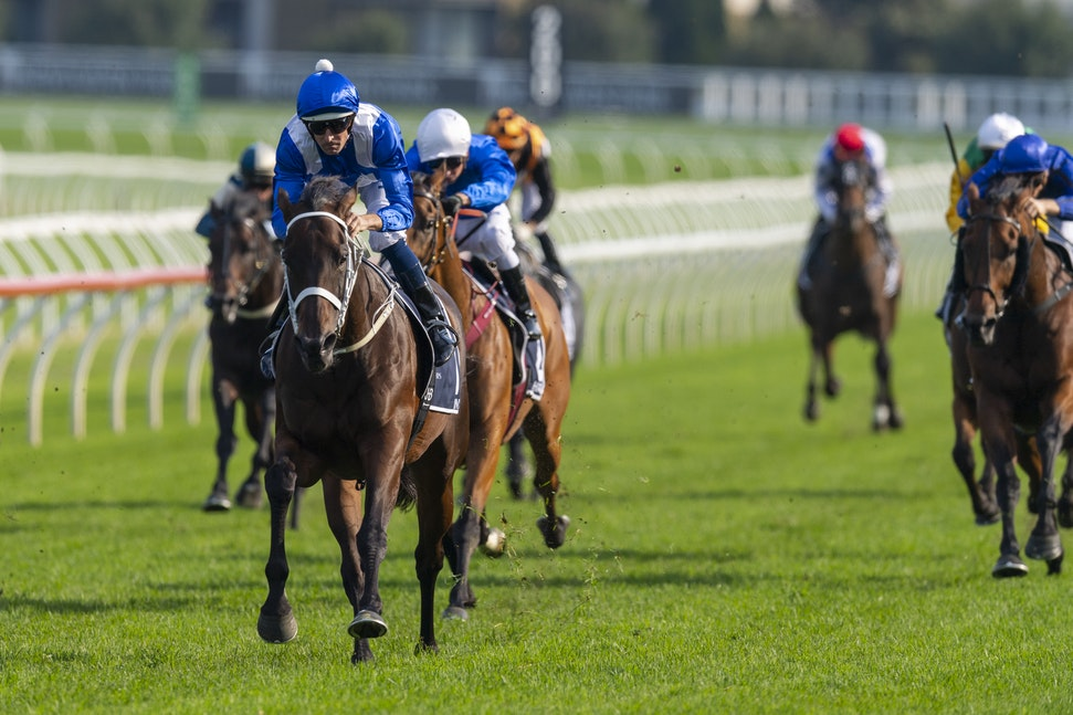 Winx-BowmanHugh-20190413-6029 - Photo by Bronwen Healy.  The Image is Everything - Bronwen Healy Photography.
