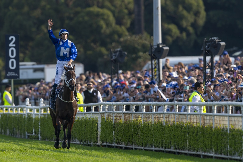Winx-BowmanHugh-20190413-6232 - Photo by Bronwen Healy.  The Image is Everything - Bronwen Healy Photography.