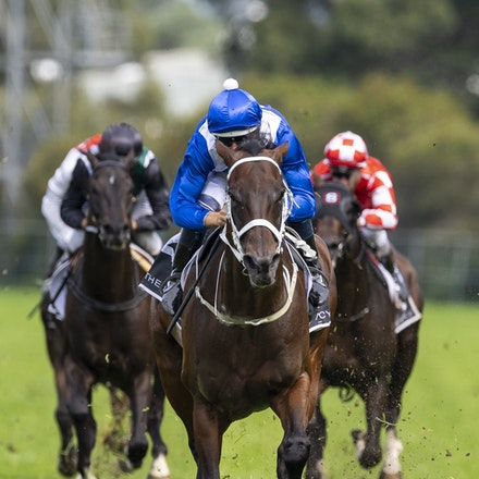 Winx-BowmanHugh-20190323-8693_2 - WINX (Street Cry x Vegas Showgirl) wins the G1 George Ryder Stakes for the 4th successive year, and her 32nd straight...