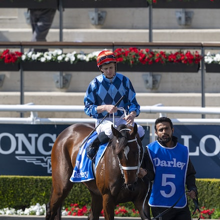 Funstar-McDonaldJames-20190921-0171 - FUNSTAR (Adelaide x Starspangled) wins the G2 Tea Rose Stakes.  Ridden by James McDonald.  Photo - Bronwen Healy....