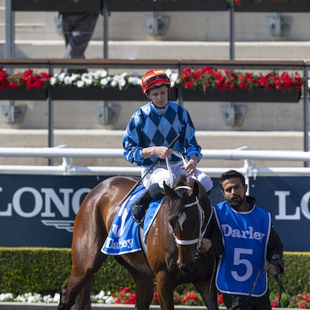 Funstar-McDonaldJames-20190921-0170 - FUNSTAR (Adelaide x Starspangled) wins the G2 Tea Rose Stakes.  Ridden by James McDonald.  Photo - Bronwen Healy....