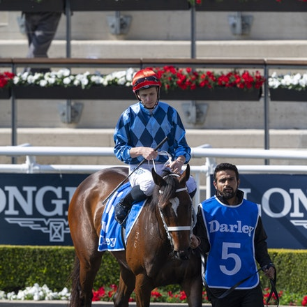 Funstar-McDonaldJames-20190921-0172 - FUNSTAR (Adelaide x Starspangled) wins the G2 Tea Rose Stakes.  Ridden by James McDonald.  Photo - Bronwen Healy....