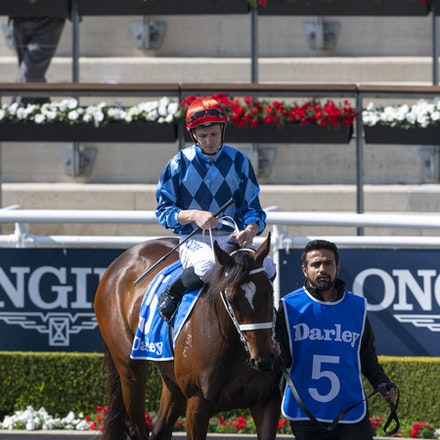 Funstar-McDonaldJames-20190921-0173 - FUNSTAR (Adelaide x Starspangled) wins the G2 Tea Rose Stakes.  Ridden by James McDonald.  Photo - Bronwen Healy....