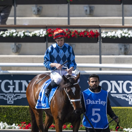 Funstar-McDonaldJames-20190921-0174 - FUNSTAR (Adelaide x Starspangled) wins the G2 Tea Rose Stakes.  Ridden by James McDonald.  Photo - Bronwen Healy....