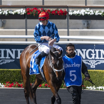 Funstar-McDonaldJames-20190921-0177 - FUNSTAR (Adelaide x Starspangled) wins the G2 Tea Rose Stakes.  Ridden by James McDonald.  Photo - Bronwen Healy....