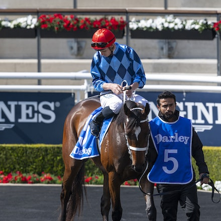 Funstar-McDonaldJames-20190921-0182 - FUNSTAR (Adelaide x Starspangled) wins the G2 Tea Rose Stakes.  Ridden by James McDonald.  Photo - Bronwen Healy....