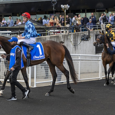 Funstar-McDonaldJames-20191005-5581 - at Royal Randwick.  05 October 2019  © The Image is Everything - Bronwen Healy & Darren Tindale Photography   Photo:...