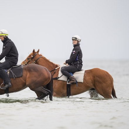 Winx-CaddenBen-10222017-0709 - WINX (brown) and RELIGIFY (chestnut) have a swim at Altona Beach.  Photo - Bronwen Healy.  The Image is Everything.  Bronwen...