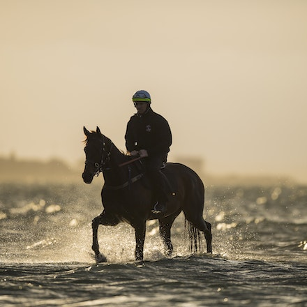 _BHP1265 - WINX (Street Cry - Vegas Showgirl) at Altona Beach.  Ridden by Ben Cadden.  Photo - Bronwen Healy.  The Image is Everything.  Bronwen Healy...