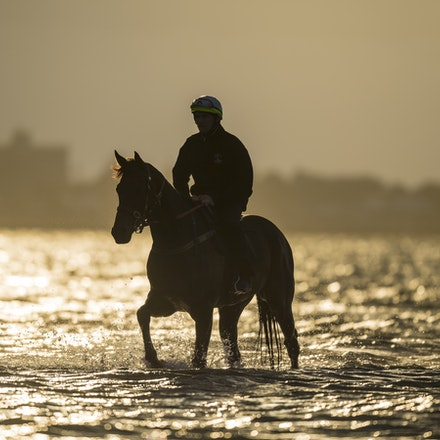 _BHP1293 - WINX (Street Cry - Vegas Showgirl) at Altona Beach.  Ridden by Ben Cadden.  Photo - Bronwen Healy.  The Image is Everything.  Bronwen Healy...