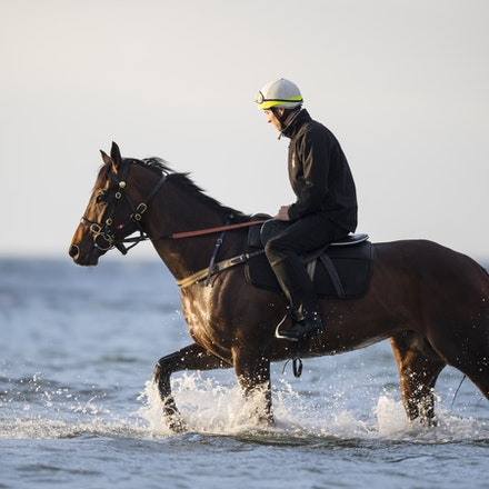 Winx-CaddenBen-10092017-0999 - WINX (Street Cry - Vegas Showgirl) at Altona Beach.  Ridden by Ben Cadden.  Photo - Bronwen Healy.  The Image is Everything....